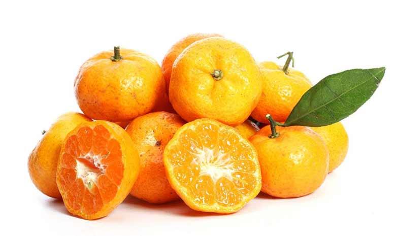 梧州砂糖橘.jpg